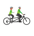 couple riding a bike vector image