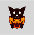 evil cut black cat on halloween pumpkin vector image vector image