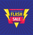 flash sale - concept promotion banner template vector image