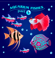 freshwater aquarium fishes vector image vector image