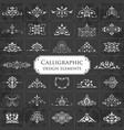 ornate calligraphic design elements on chalkboard vector image vector image