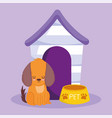 pet shop dog sitting with bowl and house animal vector image vector image
