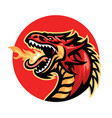 angry fire breathing dragon mascot vector image