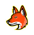 dhole or asiatic wild dog mascot vector image vector image