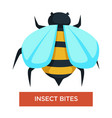 insect bites bee stings bug or beetle allergy vector image vector image