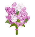 lilac bouquet vector image vector image