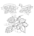 Ripe hops and leaves vector image vector image