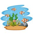 scene with clownfish in sea vector image vector image