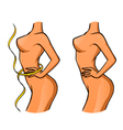Slender girl vector image vector image