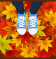 autumn leaves background template with red orange vector image