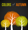 Autumn trees with colorful leaves vector image