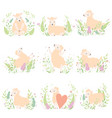 cute little lambs set adorable sheeps animals on vector image vector image