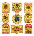 labels for sunflower oil with vector image
