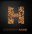 letter h logo gold dots alphabet logotype vector image vector image