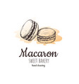 macaron macaroon almond cakes vector image vector image