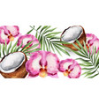 orchid flowers and coconut watercolor vector image vector image