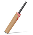 bat for cricket vector image vector image