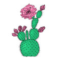 home cactus plants or flower cozy cute element vector image vector image