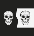 human skull sketch hand drawn vector image