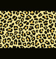 leopard skin seamless background on graphic art vector image