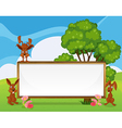 Rabbits playing near the empty wooden signboard vector image vector image