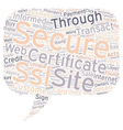 Safe and Secure Online Payments with SSL vector image vector image