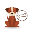 veterinary dog care bone food icon vector image vector image