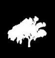 white silhouette of leafed tree isolated on black vector image vector image