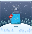 winter sale background with blue bag vector image