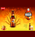 beer ads bottle and wheats on gold bokeh vector image vector image