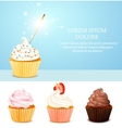 Birthday Card With Cupcake vector image vector image