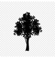 black silhouette of leafed tree icon isolated on vector image