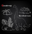 brachiosaurus with plant and stone on chalk vector image vector image