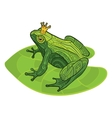 frog with crown on leaf vector image