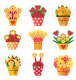 fruits in bloom bouquets white vector image