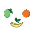 lime orange and banana flat style icon set vector image