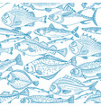 marine background nature sea fish vector image