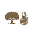 olive tree and bottle sketch vector image vector image