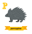 Porcupine P letter Cute children animal alphabet vector image vector image