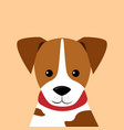 portrait of little puppy vector image vector image