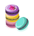 delicious macaroon colorful dessert vector image