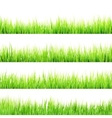 Fresh spring green grass isolated EPS 10 vector image
