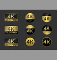4k simple badges vector image
