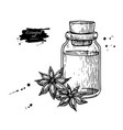 anise star essential oil bottle and heap of spices vector image vector image