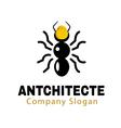 Antchitecte Design vector image vector image