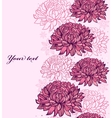 chrysanthemums vector image vector image