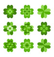 clover leaves set symbol of luck vector image vector image