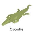 crocodile icon isometric style vector image vector image