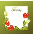 Decorative frame with flowers spathiphyllum and vector image
