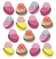 delicious macaroon colorful dessert set vector image